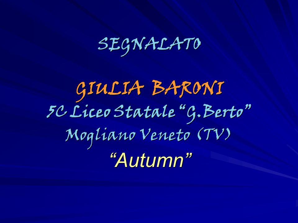 5C Liceo Statale G.Berto