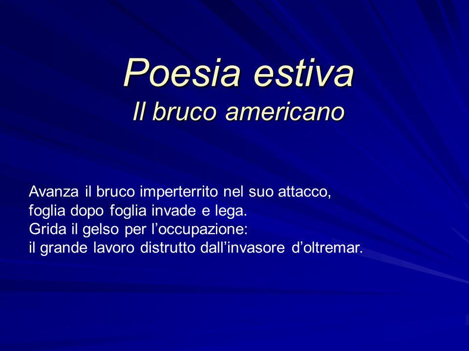 Poesia estiva Il bruco americano