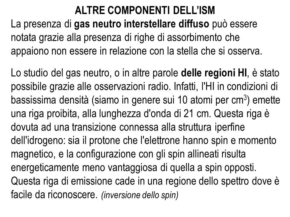 ALTRE COMPONENTI DELL'ISM