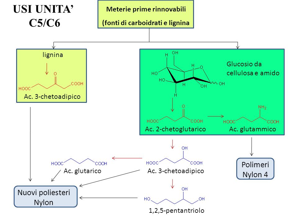 Meterie prime rinnovabili (fonti di carboidrati e lignina