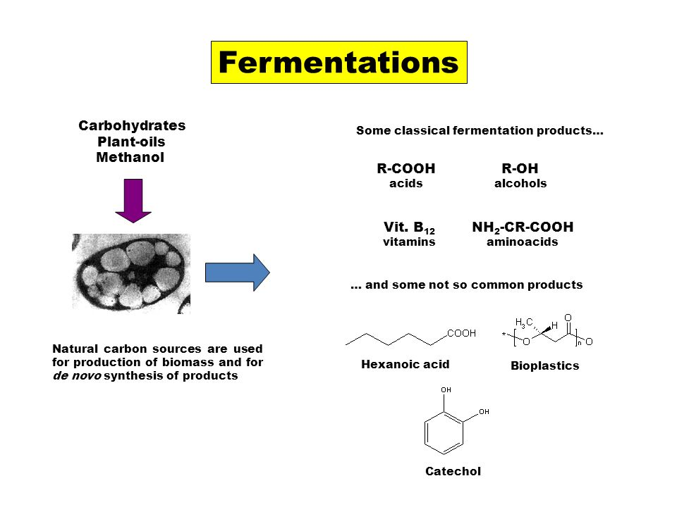 Fermentations Carbohydrates Plant-oils Methanol R-COOH R-OH Vit. B12