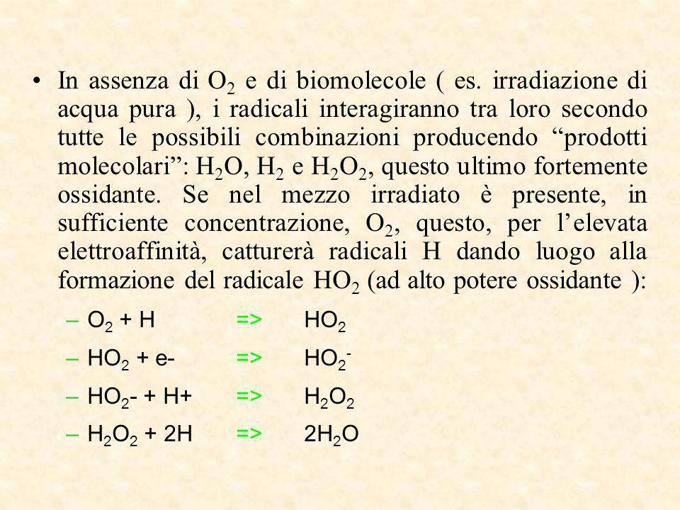 In assenza di O2 e di biomolecole ( es