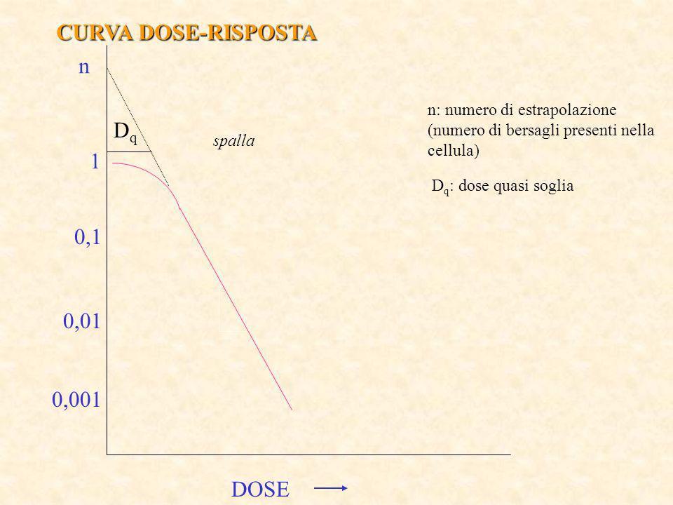 CURVA DOSE-RISPOSTA n Dq 1 0,1 0,01 0,001 DOSE