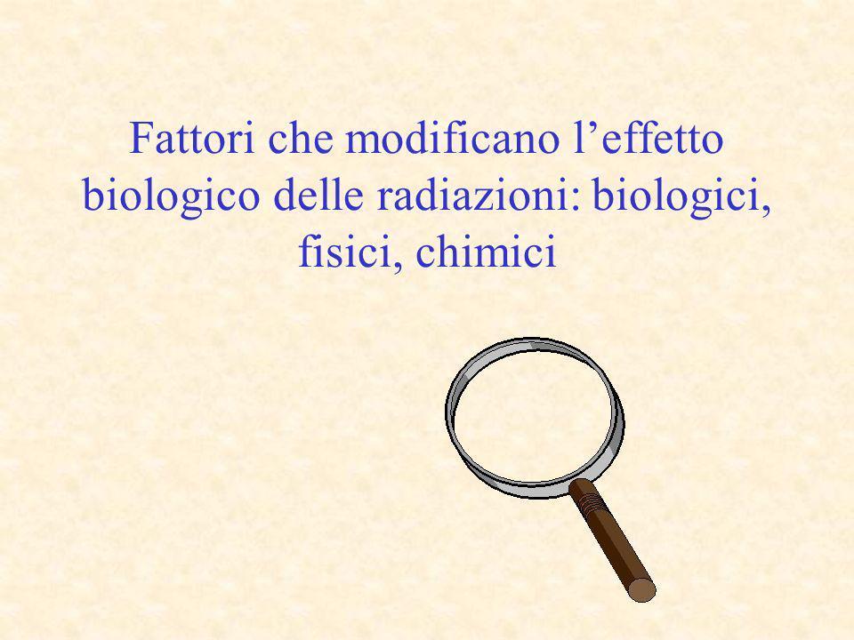 Fattori che modificano l'effetto biologico delle radiazioni: biologici, fisici, chimici