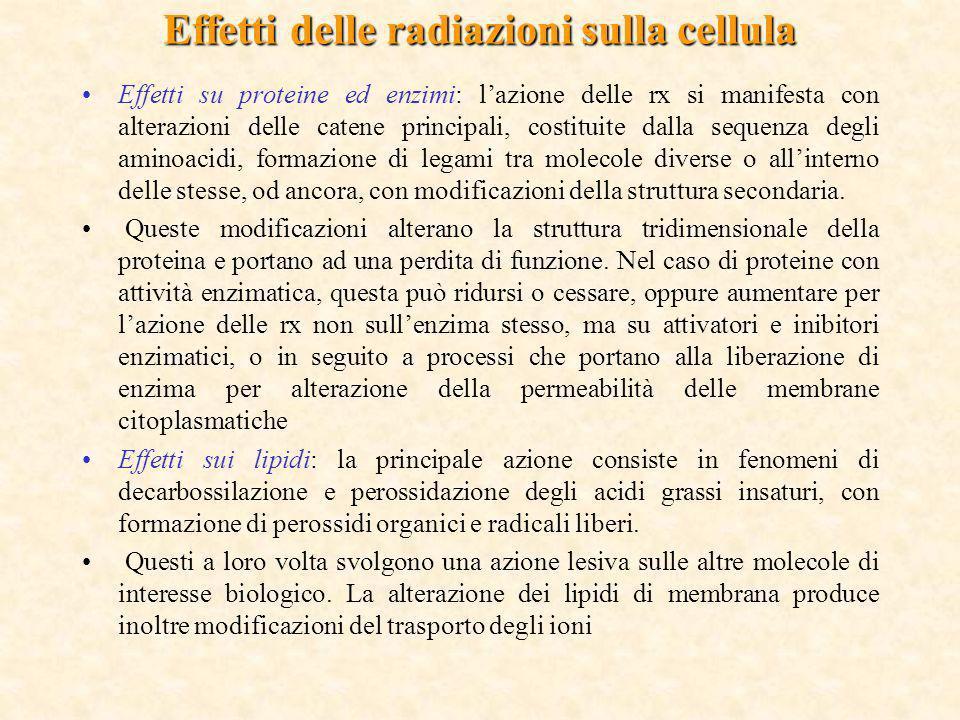Effetti delle radiazioni sulla cellula