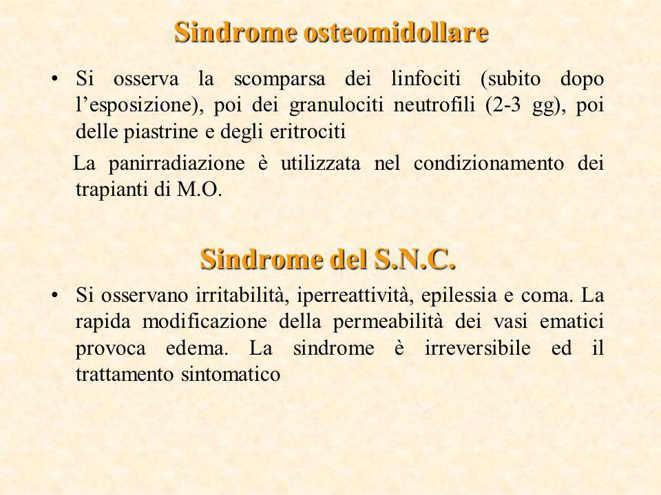 Sindrome osteomidollare