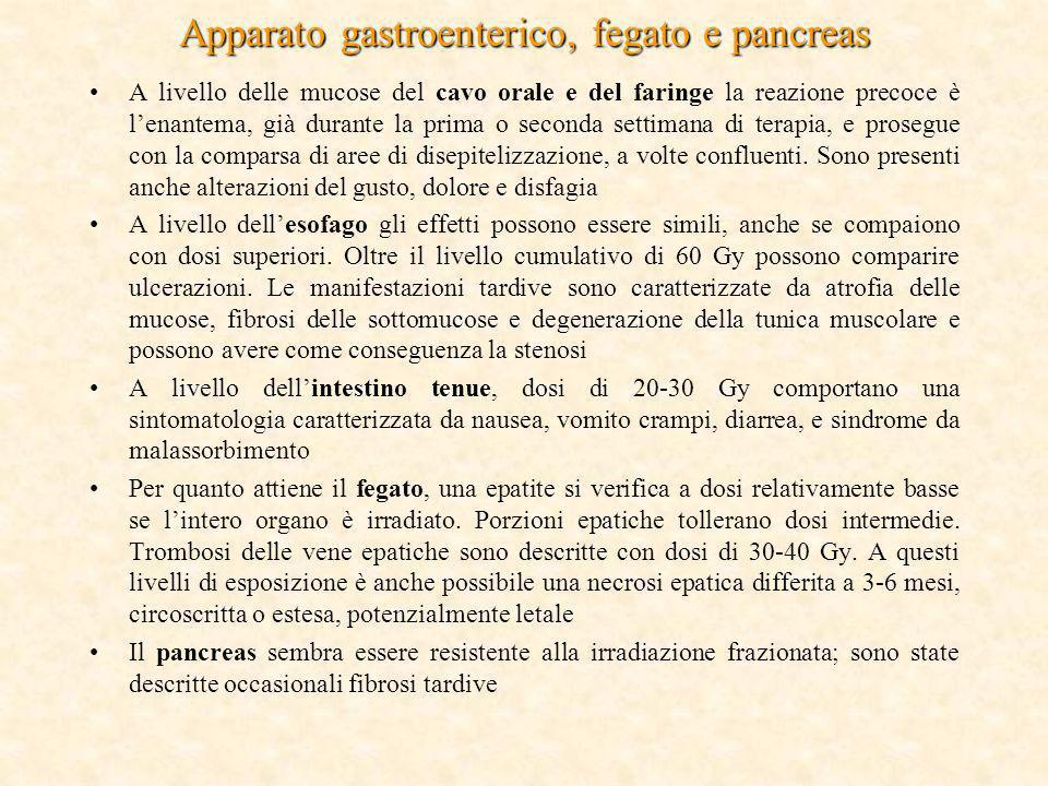 Apparato gastroenterico, fegato e pancreas
