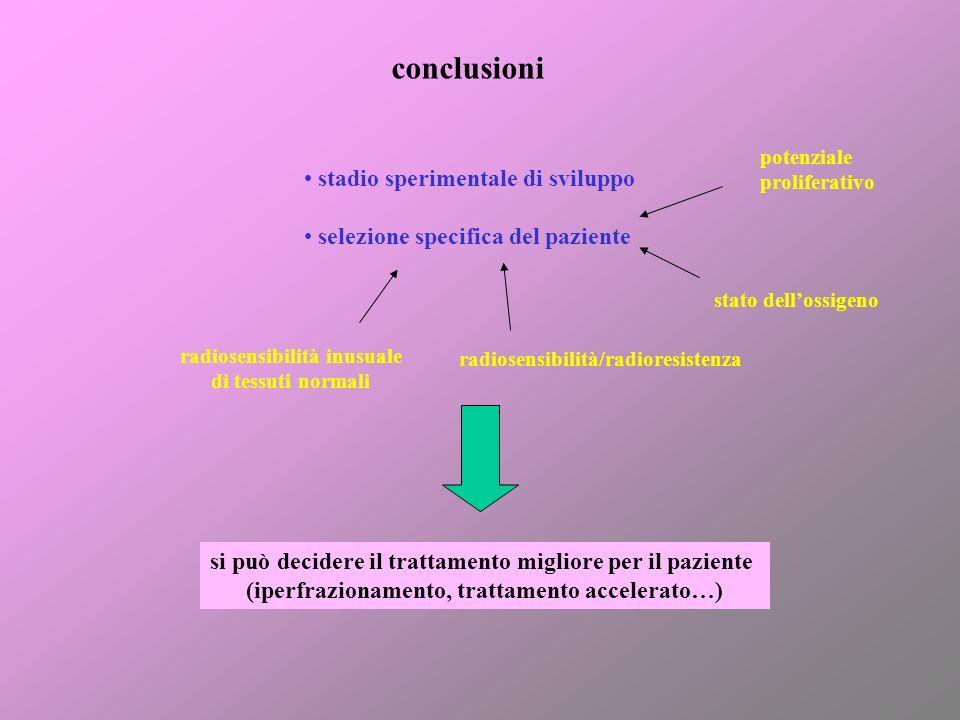 conclusioni stadio sperimentale di sviluppo