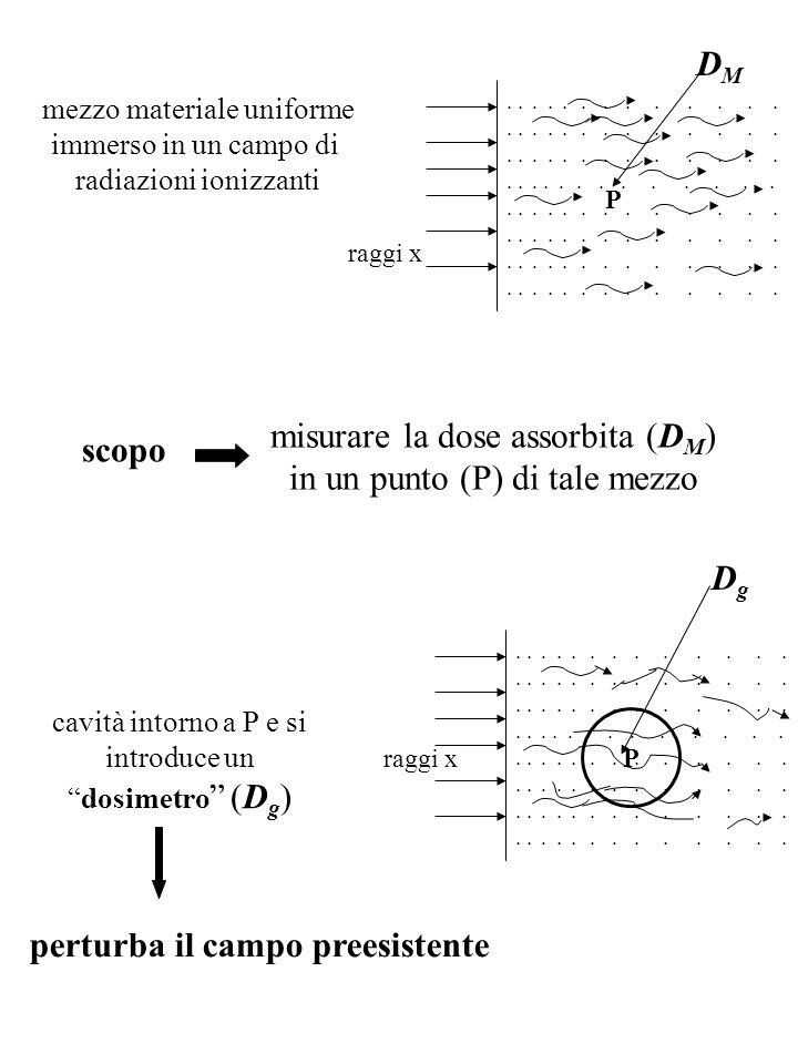 misurare la dose assorbita (DM) in un punto (P) di tale mezzo scopo