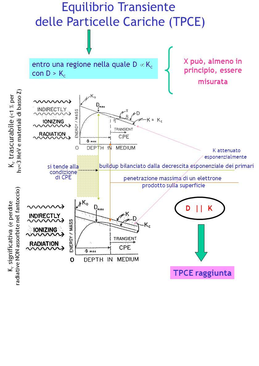 Equilibrio Transiente delle Particelle Cariche (TPCE)