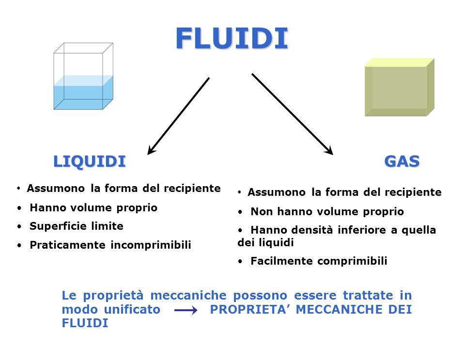FLUIDI LIQUIDI GAS Assumono la forma del recipiente
