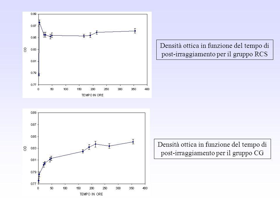 Densità ottica in funzione del tempo di post-irraggiamento per il gruppo RCS