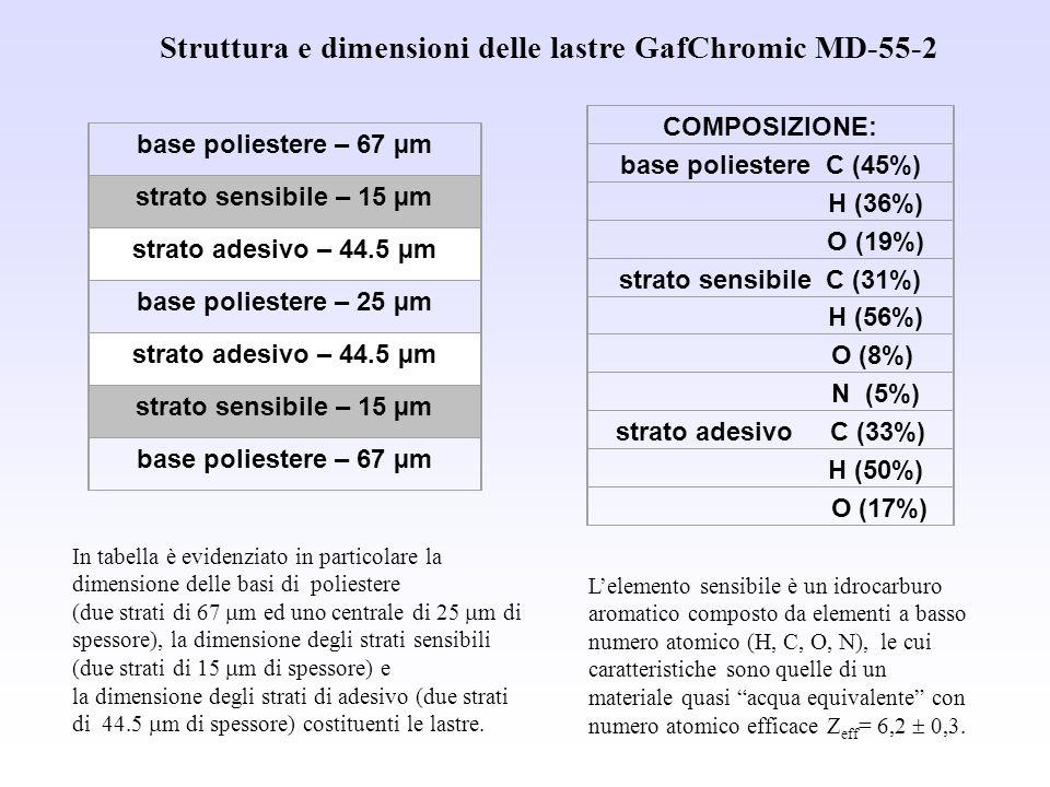 Struttura e dimensioni delle lastre GafChromic MD-55-2