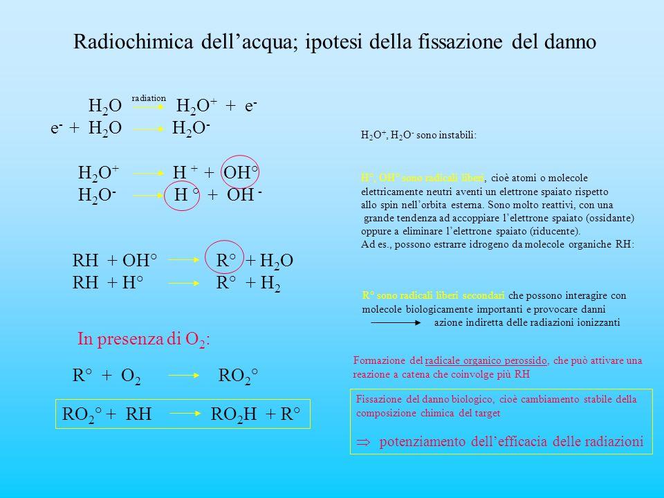 Radiochimica dell'acqua; ipotesi della fissazione del danno