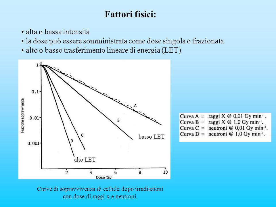 Fattori fisici: alta o bassa intensità