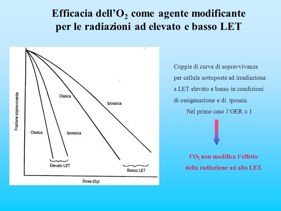 l'O2 non modifica l'effetto della radiazione ad alto LET.