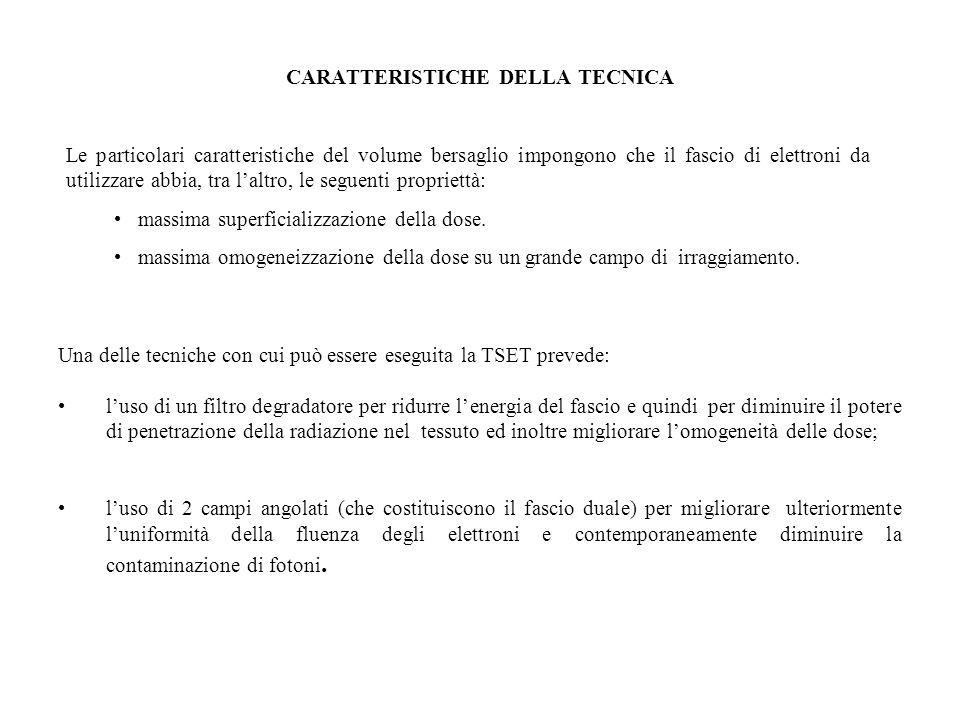 CARATTERISTICHE DELLA TECNICA
