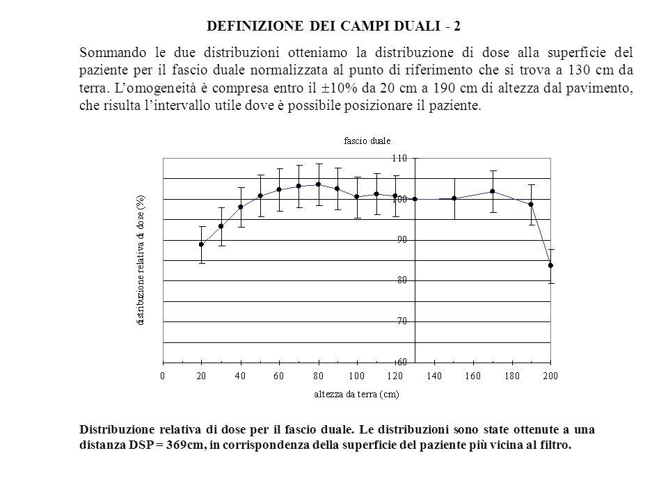 DEFINIZIONE DEI CAMPI DUALI - 2