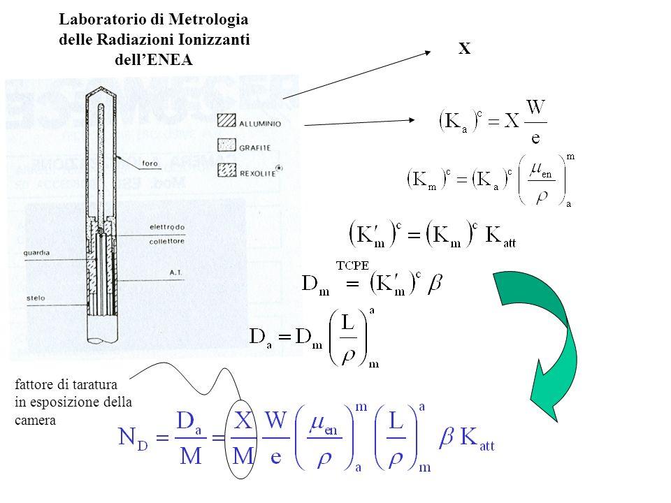 Laboratorio di Metrologia delle Radiazioni Ionizzanti