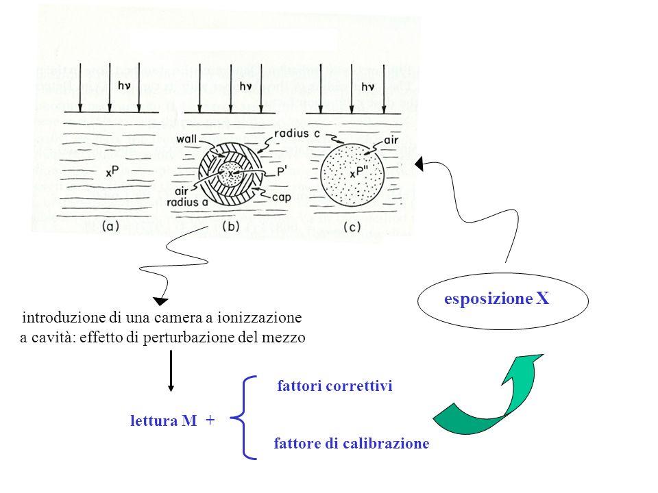 esposizione X introduzione di una camera a ionizzazione