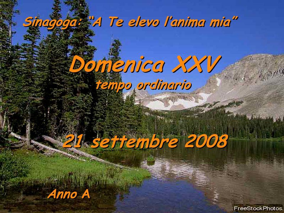 Domenica XXV 21 settembre 2008 tempo ordinario