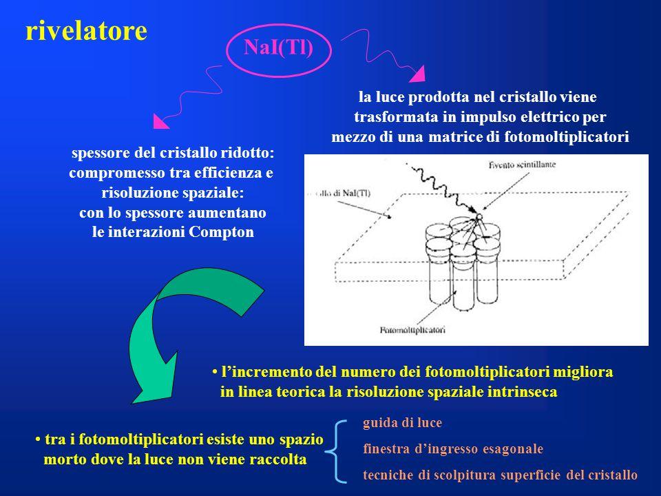 rivelatore NaI(Tl) la luce prodotta nel cristallo viene
