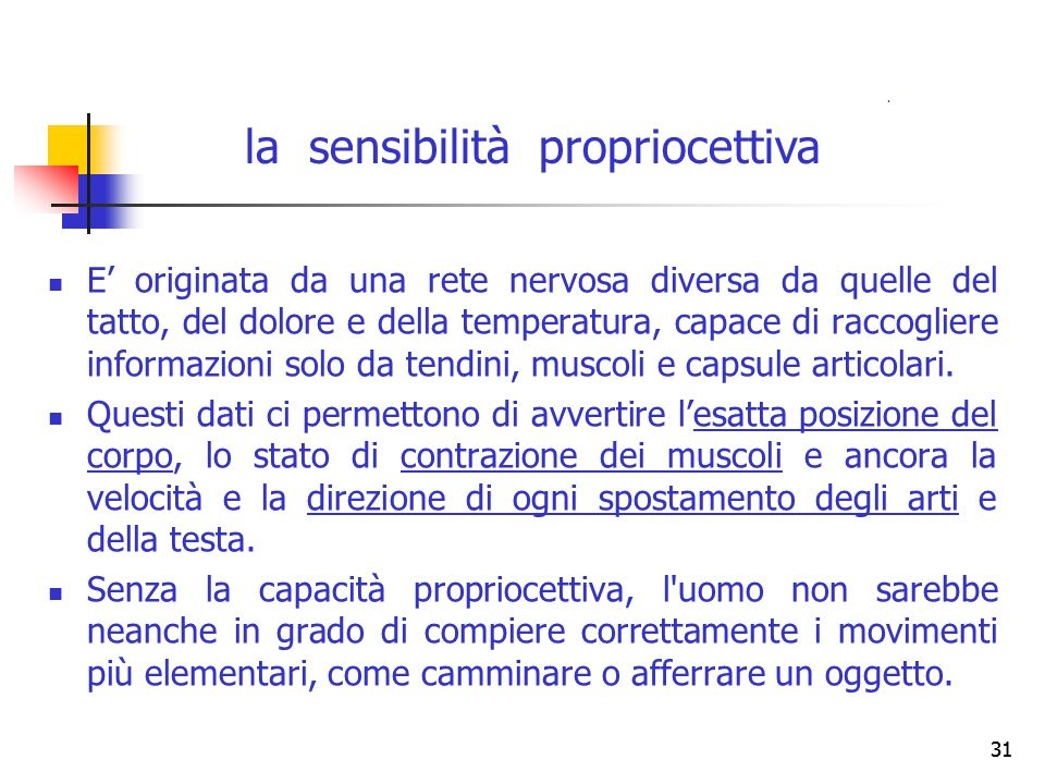 la sensibilità propriocettiva