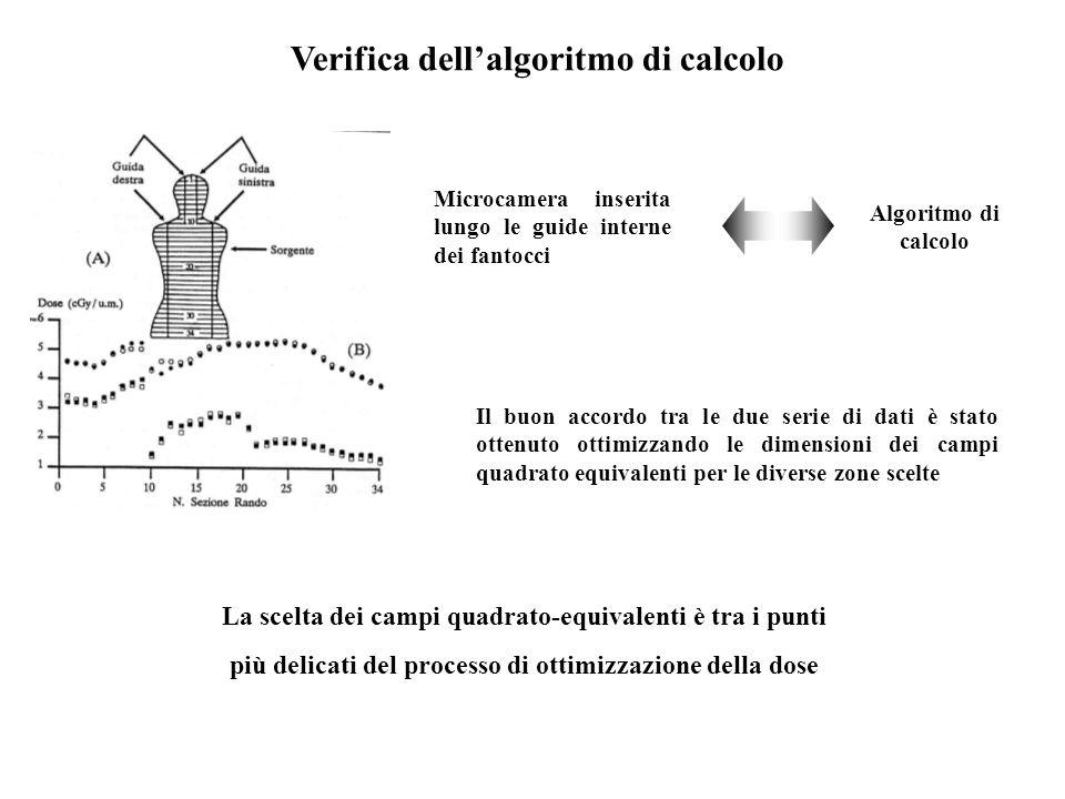 Verifica dell'algoritmo di calcolo