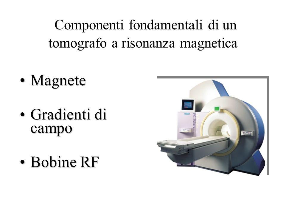 Componenti fondamentali di un tomografo a risonanza magnetica