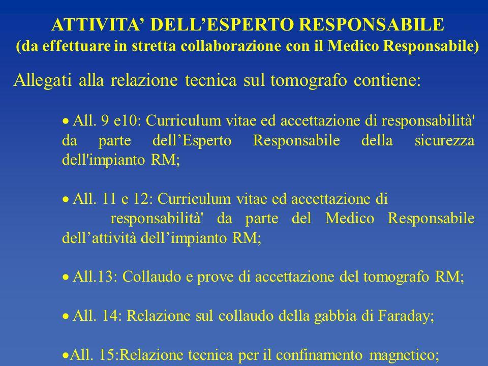 ATTIVITA' DELL'ESPERTO RESPONSABILE