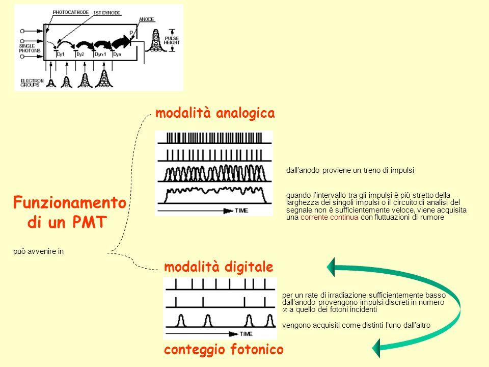 Funzionamento di un PMT modalità analogica modalità digitale