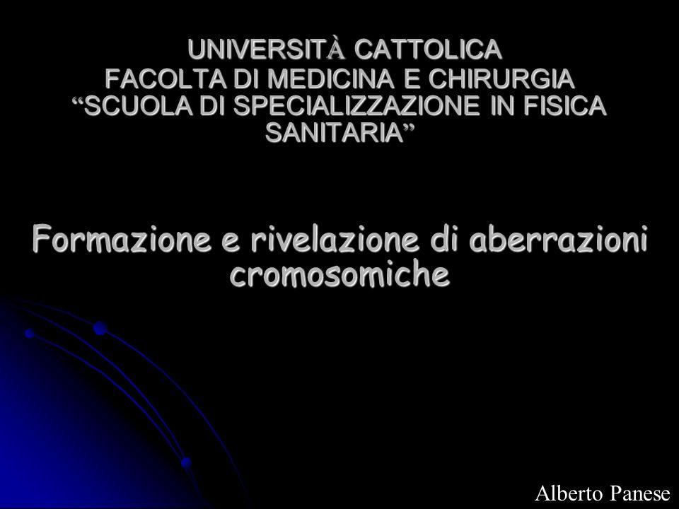 UNIVERSITÀ CATTOLICA FACOLTA DI MEDICINA E CHIRURGIA SCUOLA DI SPECIALIZZAZIONE IN FISICA SANITARIA Formazione e rivelazione di aberrazioni cromosomiche