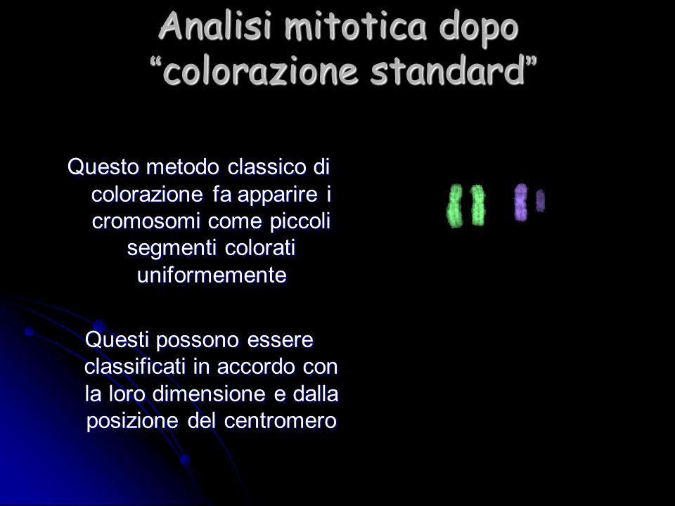 Analisi mitotica dopo colorazione standard