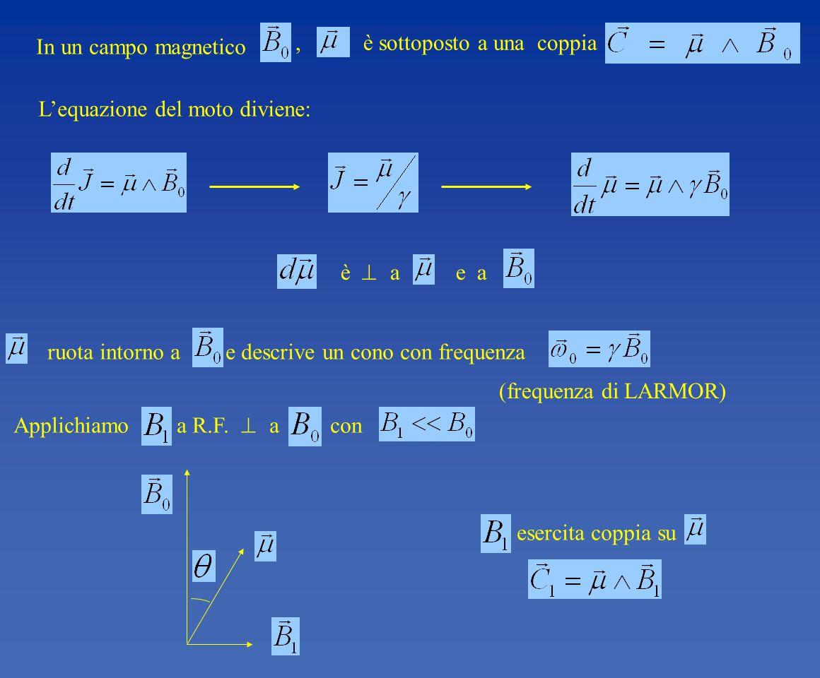 In un campo magnetico , è sottoposto a una coppia. L'equazione del moto diviene: è  a e a.