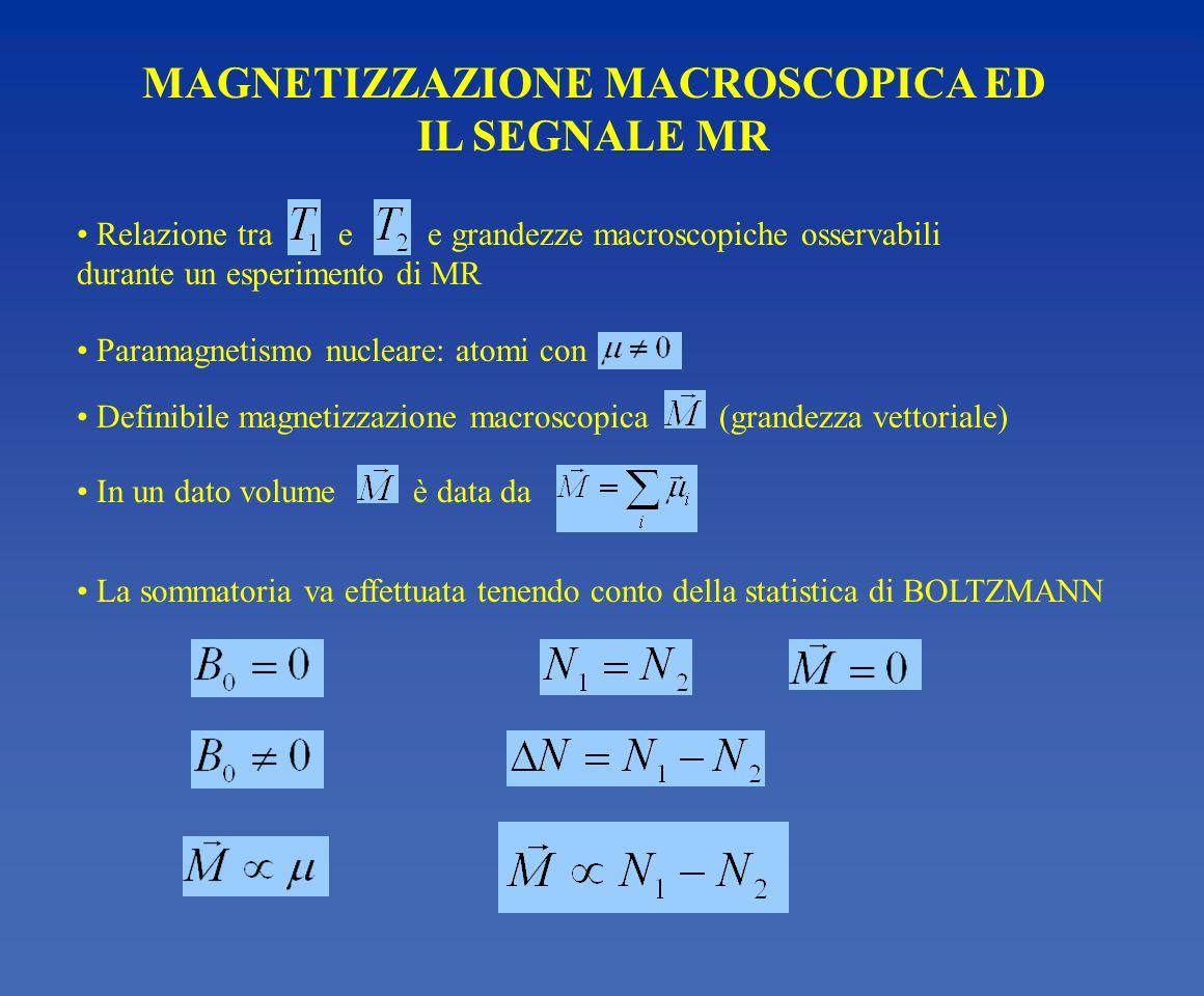 MAGNETIZZAZIONE MACROSCOPICA ED IL SEGNALE MR