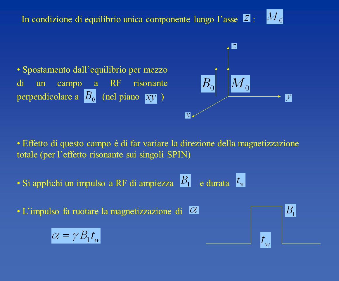 In condizione di equilibrio unica componente lungo l'asse :