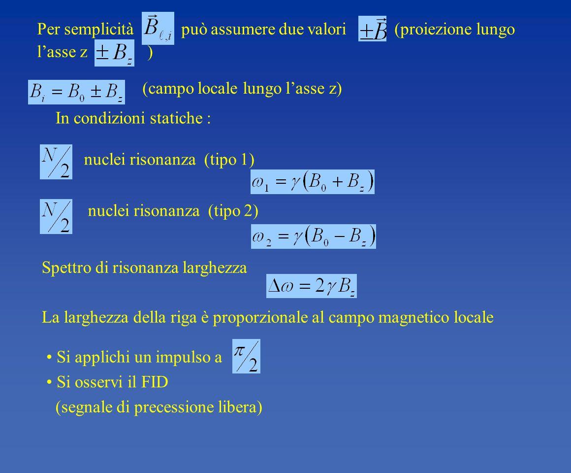 Per semplicità può assumere due valori (proiezione lungo l'asse z )