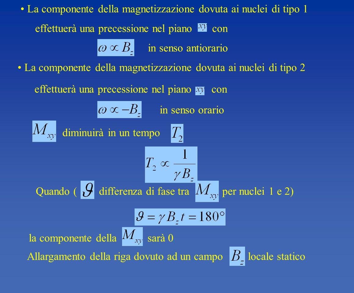 La componente della magnetizzazione dovuta ai nuclei di tipo 1