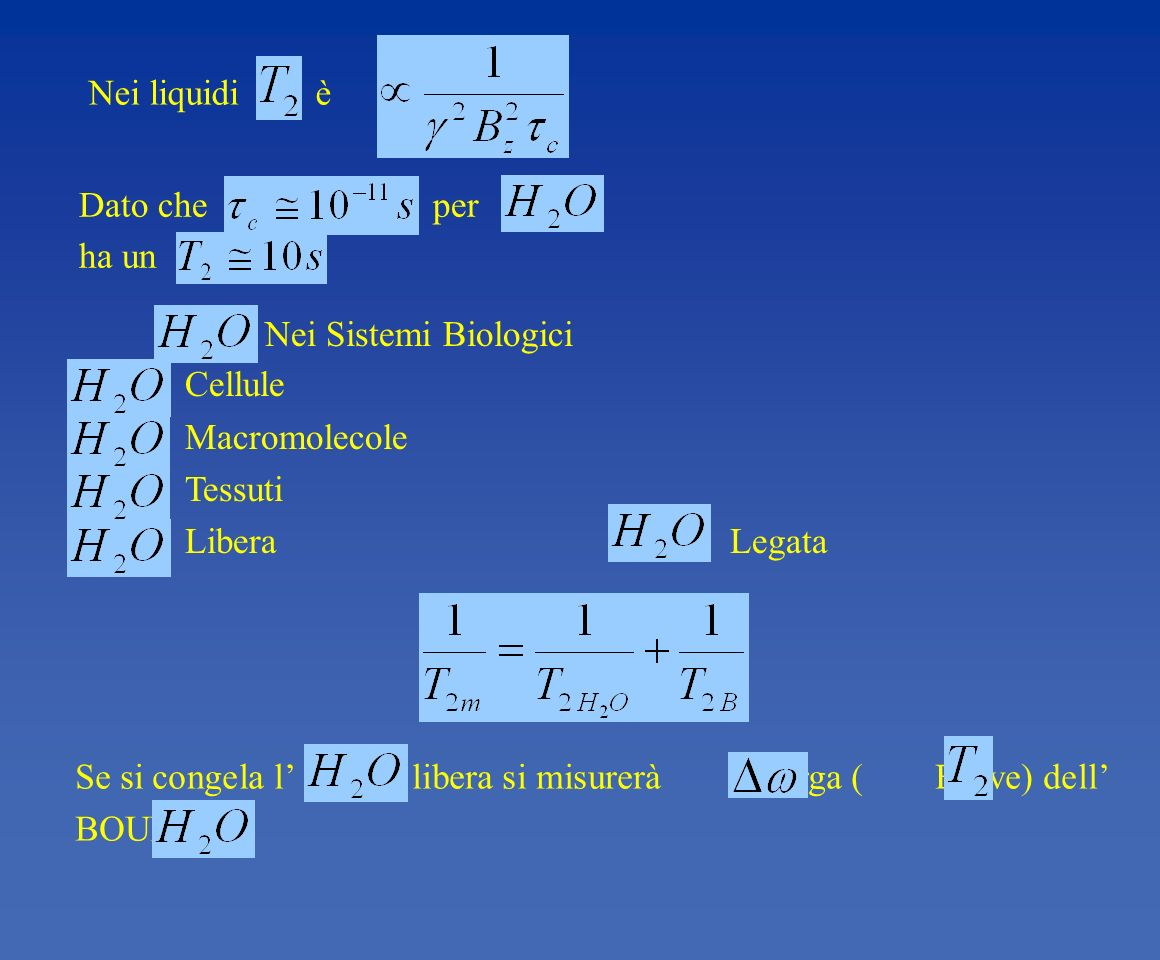 Nei liquidi èDato che per. ha un. Nei Sistemi Biologici. Cellule. Macromolecole.