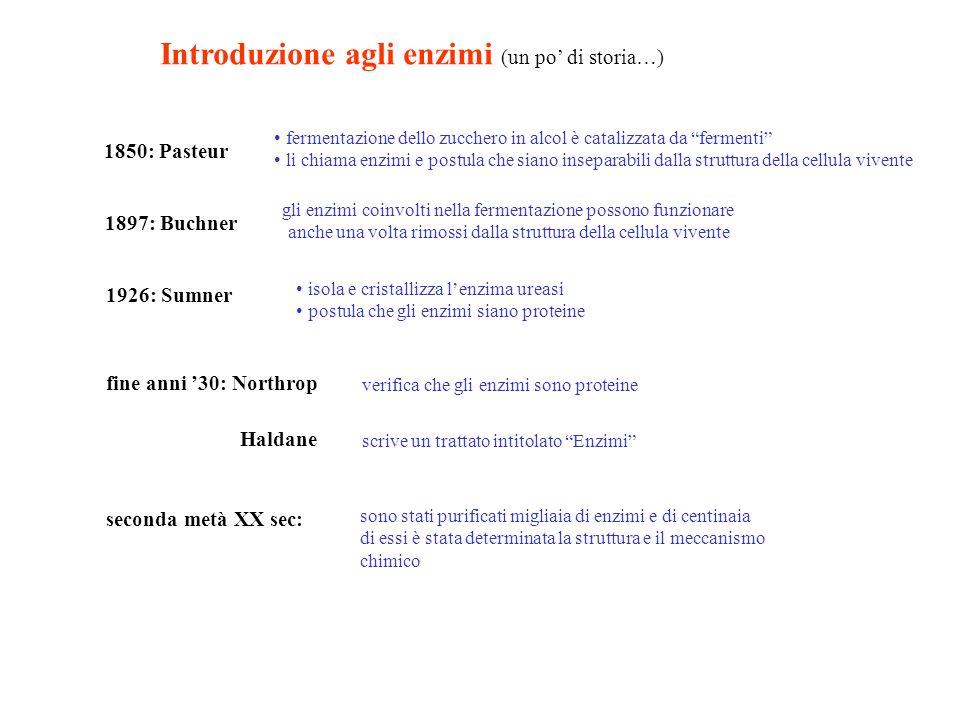 Introduzione agli enzimi (un po' di storia…)