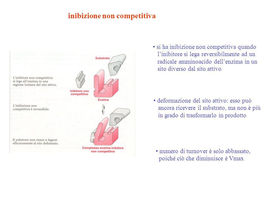 inibizione non competitiva