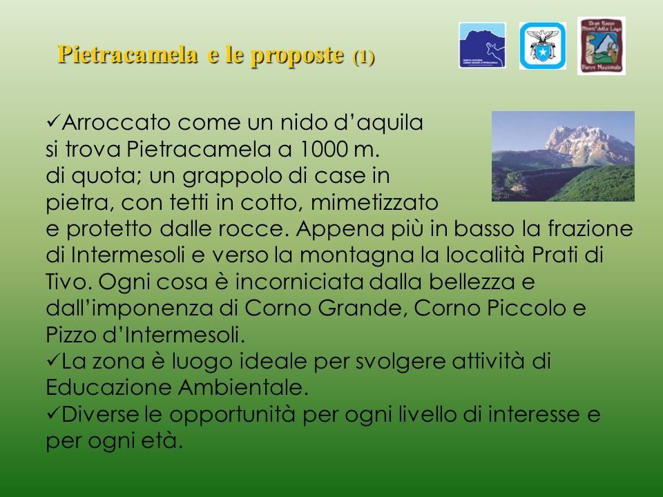 Pietracamela e le proposte (1)