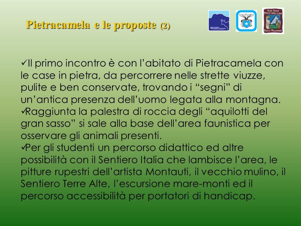 Pietracamela e le proposte (2)