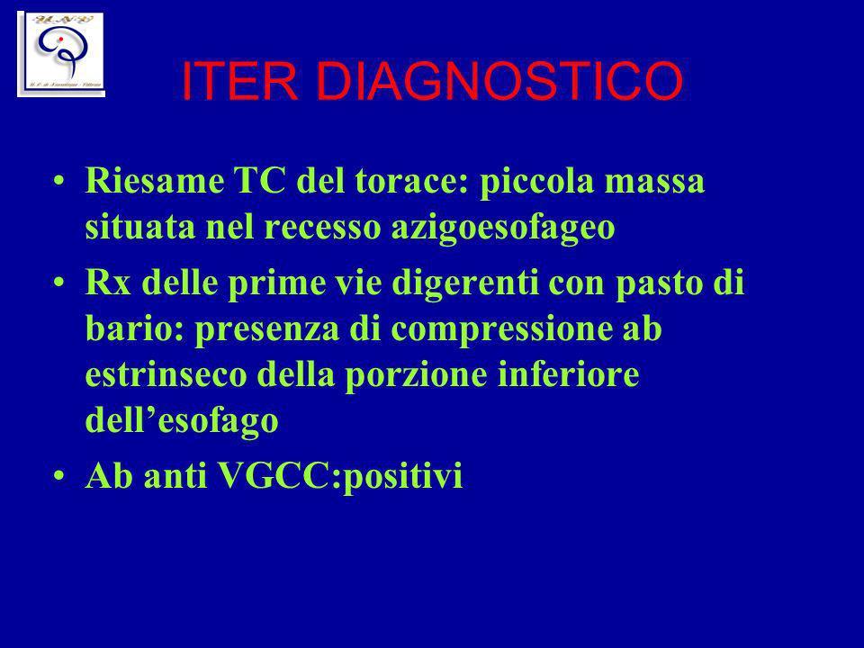 ITER DIAGNOSTICO Riesame TC del torace: piccola massa situata nel recesso azigoesofageo.