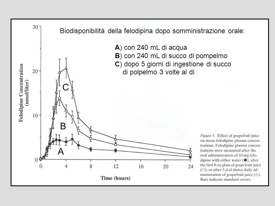 C B A Biodisponibilità della felodipina dopo somministrazione orale: