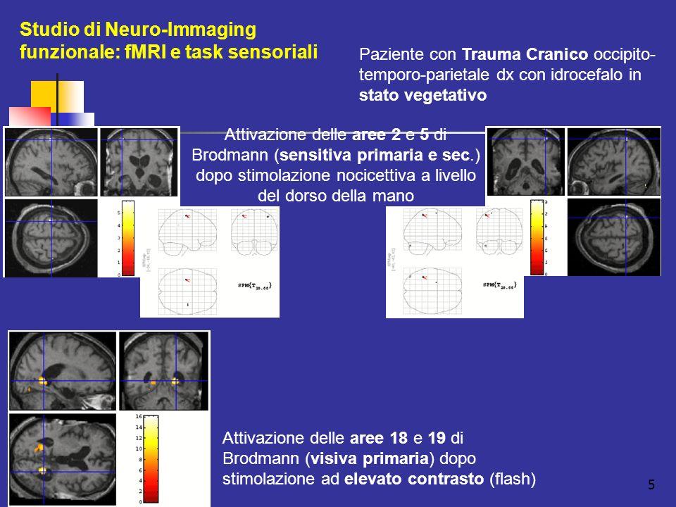 Studio di Neuro-Immaging funzionale: fMRI e task sensoriali