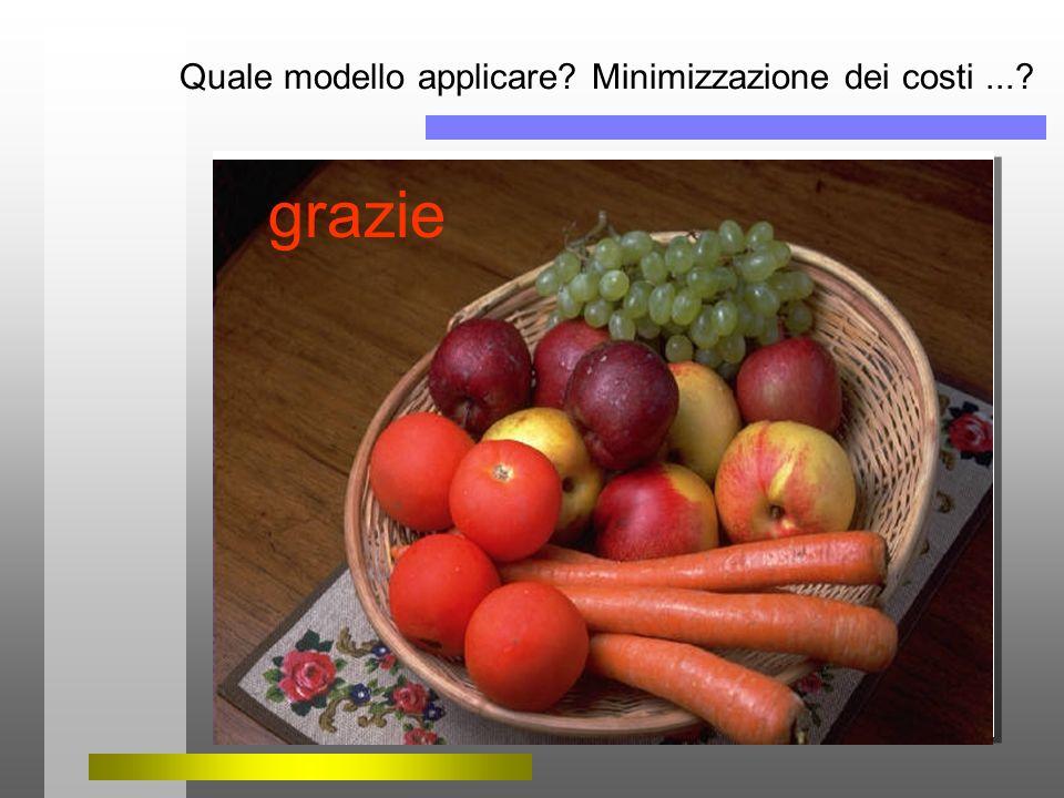 Quale modello applicare Minimizzazione dei costi ...