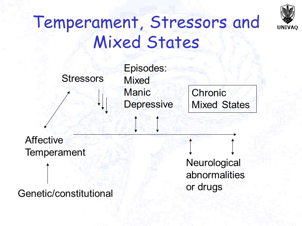 Temperament, Stressors and Mixed States