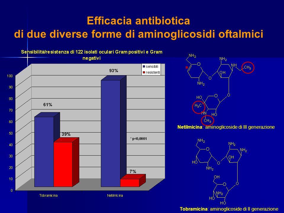 Efficacia antibiotica di due diverse forme di aminoglicosidi oftalmici