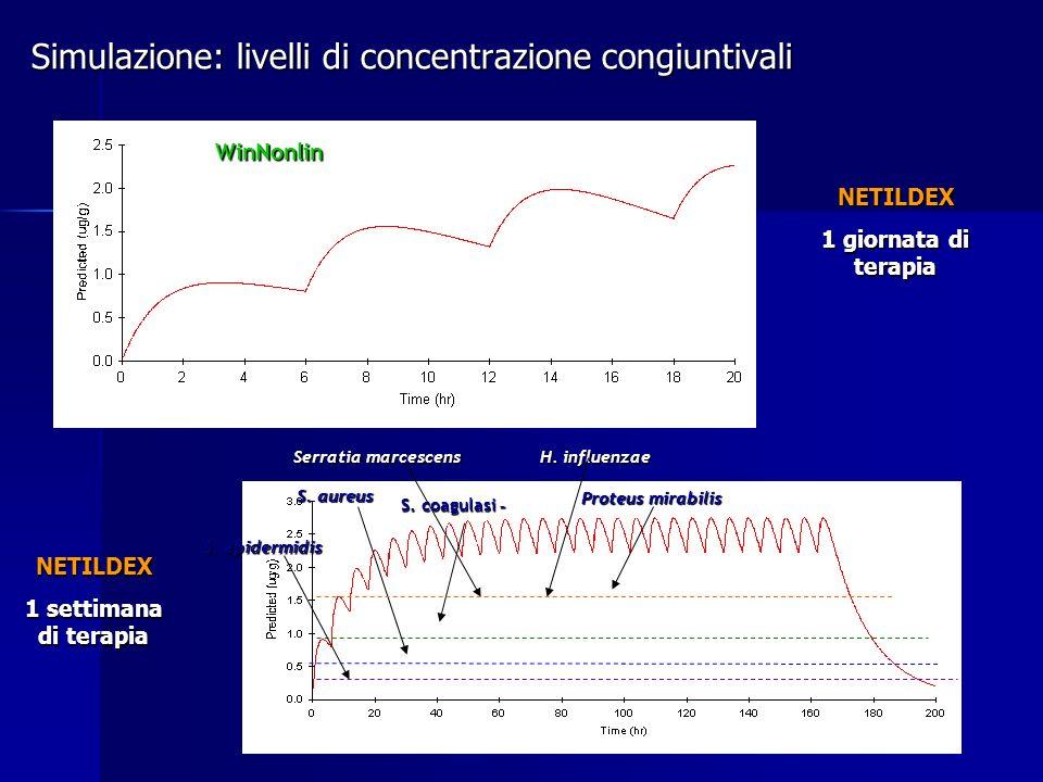 Simulazione: livelli di concentrazione congiuntivali